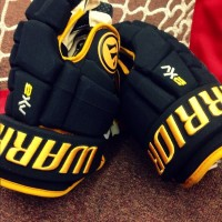 warrior gloves